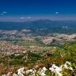 Pogled na Podgoricu