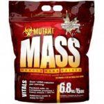 Prehrana je vrlo važna za rast mišićne mase